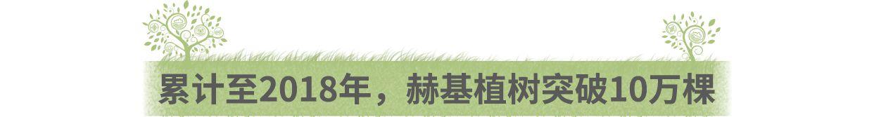 赫基集团十万绿林,一个新的起点